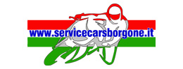 serviceborgone